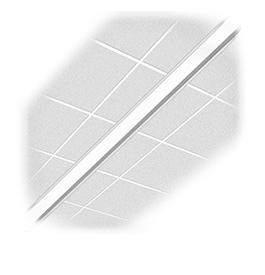 Stripe 62 (STRP62)