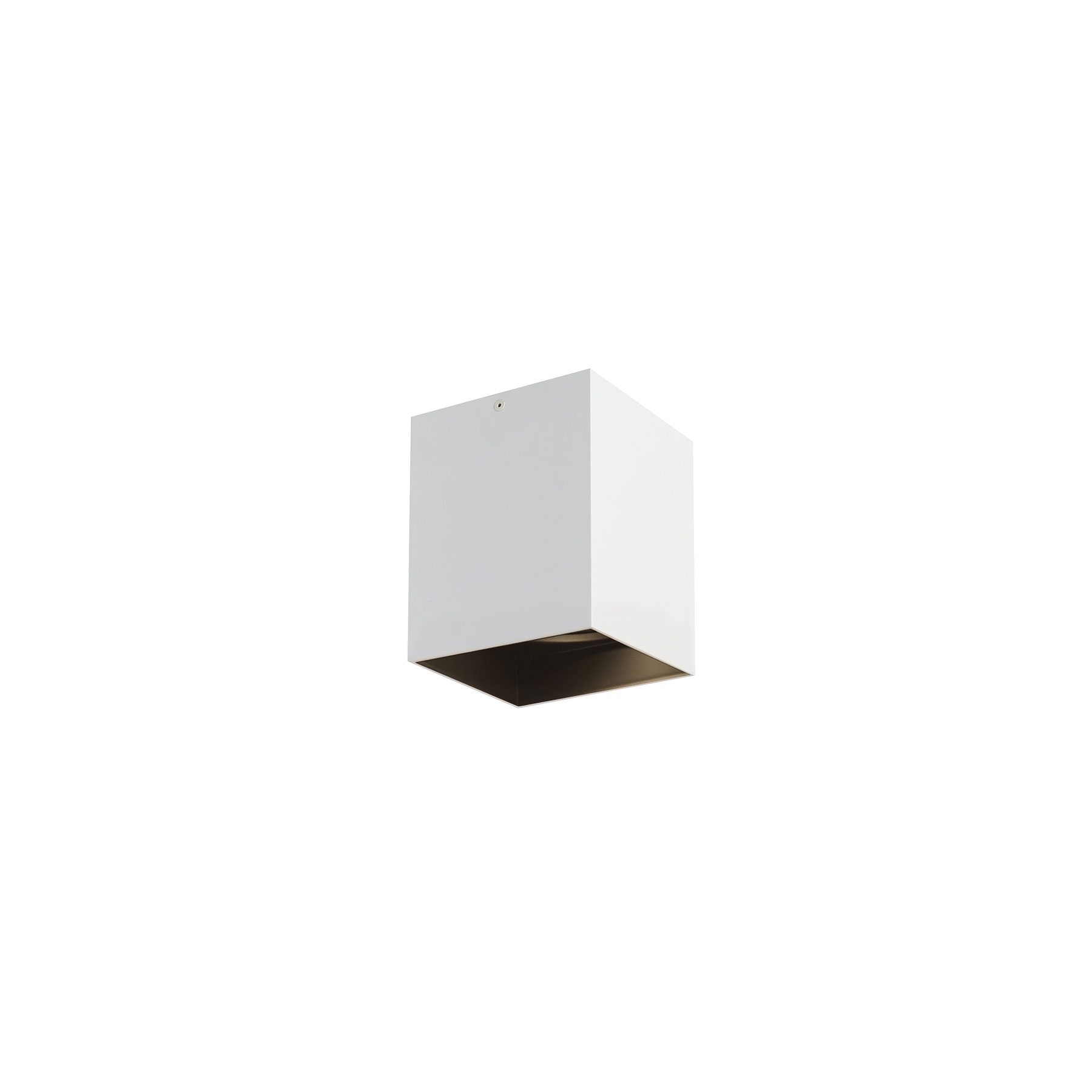 Exo 30 Deg Ceiling Light