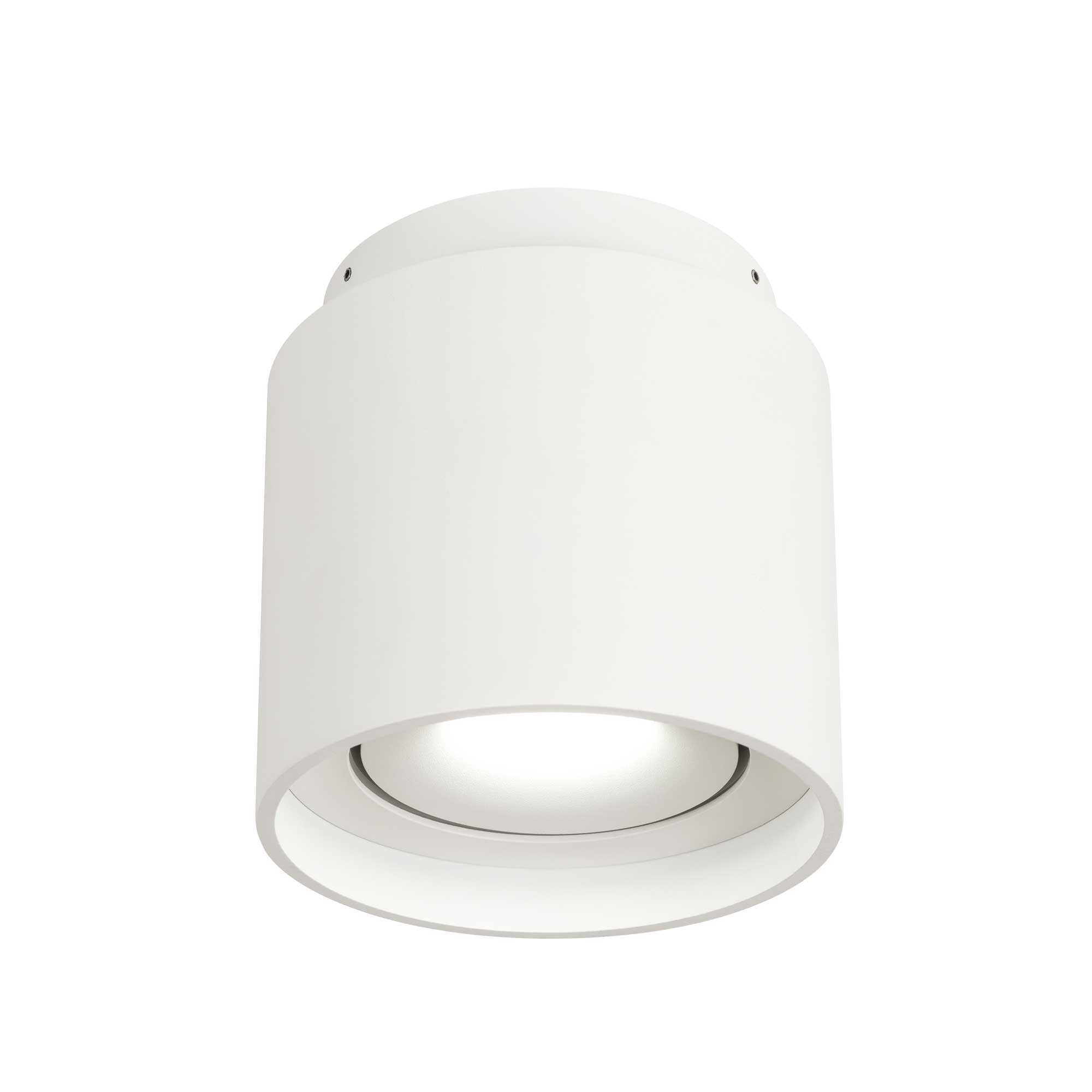 Coupe Ceiling Light