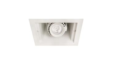 Hornet® HP Remodeler 1 Lt LED