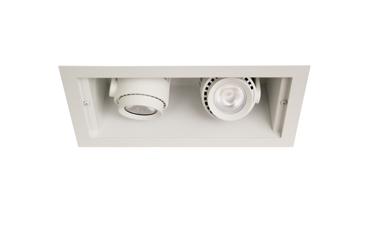 Hornet® HP Remodeler 2 Lt LED