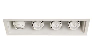 Hornet® HP Remodeler 4 Lt LED