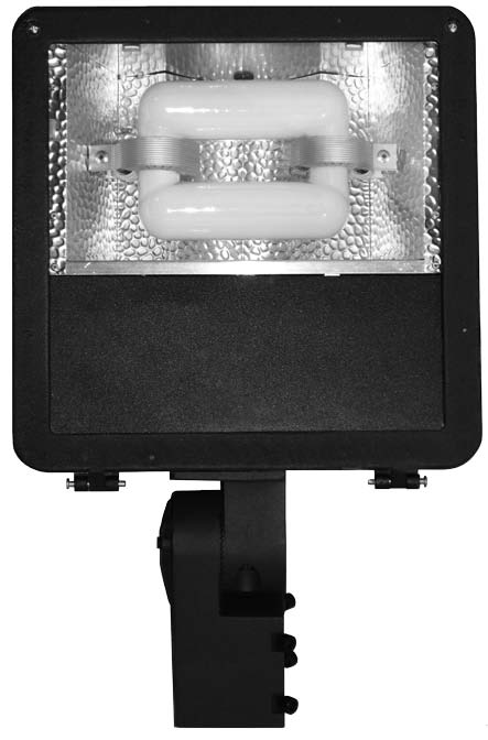 "DELUXE 12"" AREA - FLOOD INDUCTION LUMINAIRE"