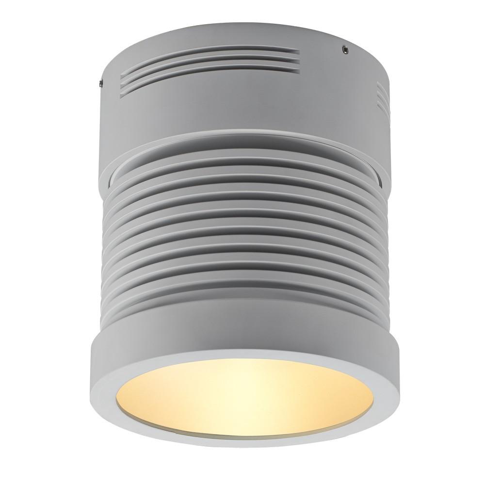 Z25 LED Surface Mount Cylinder