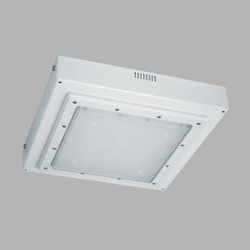 D533-LED Canopy Light