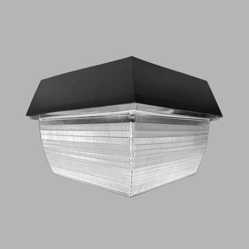 D536-LED Canopy Light