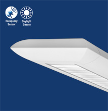 Series X1-E Elliptical Luminaire with Many Optical Options