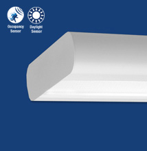 Series X1-O Oval Luminaire with Many Optical Options