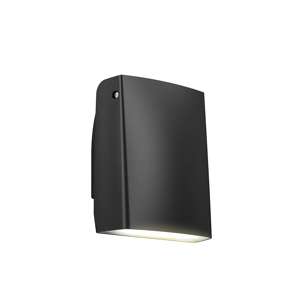 1180T - LED adjustable wall pack