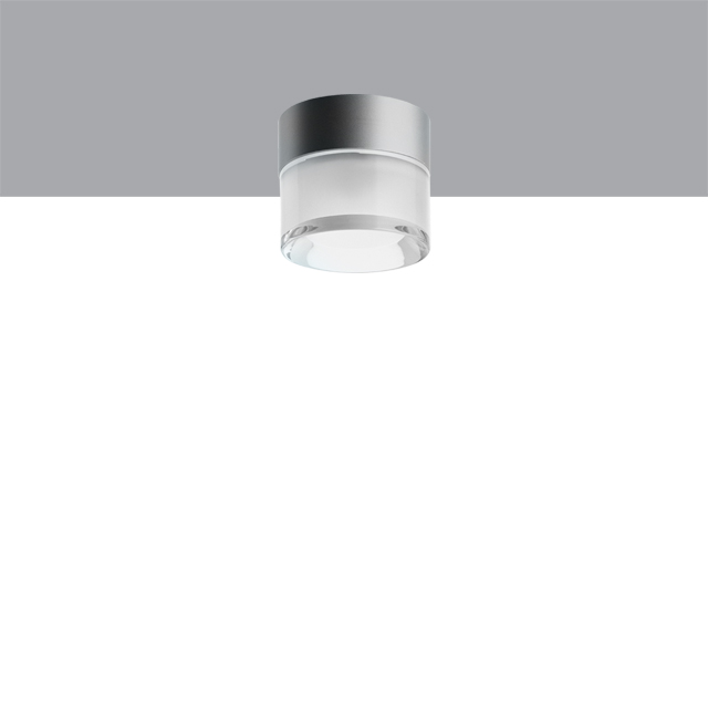 Cup Ceiling |  41/2
