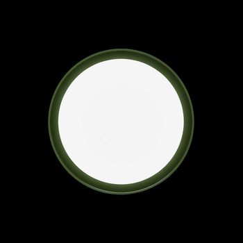 Anna310 Mid-Power LED / Bicolour Structure White-Green