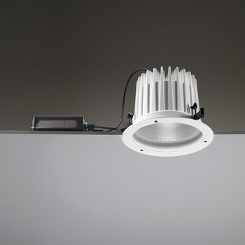 Leila225 CoB LED / Painted Frame - Wide Beam 45