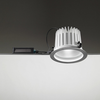 Leila225 CoB LED / Stainless Steel Frame - Wide Beam 45